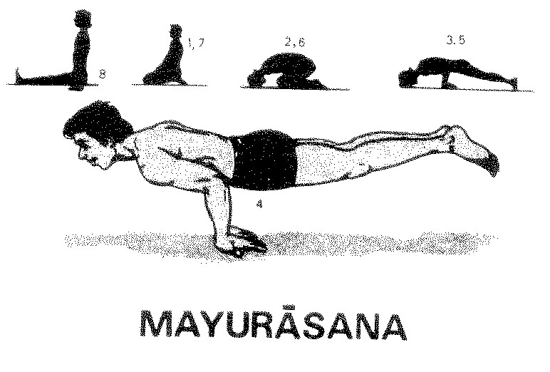 Fish Pose Diaphragm Lock All Exercises Which Train The Abdominal Muscles